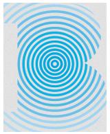 Braiden Acoustics logo